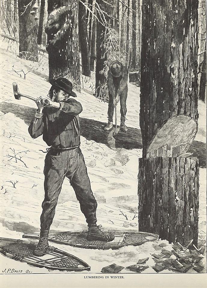 Adirondack Lumber Jack